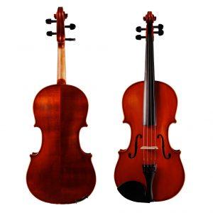 Galiano 1 Viola
